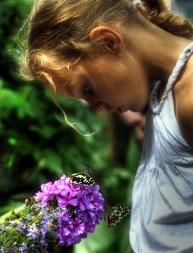 In de vlindertuin