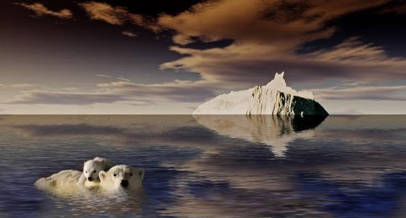 de laatste ijsbeer 3